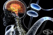 Болестта на Паркинсон: най-новата  здравна тема в Национален здравен портал framar.bg