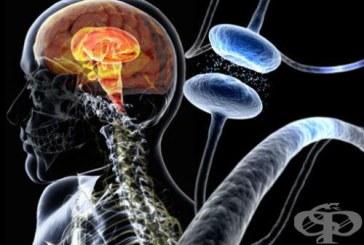 Странични ефекти на антипаркинсоновите медикаменти
