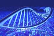 Генетични различия се свързват с ускорено прогресиране на болестта на Паркинсон и деменция