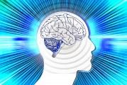 Нова хипотеза разделя болестта на Паркинсон на два подтипа