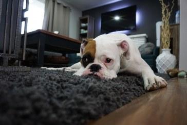 Паркинсон – какво трябва да променим в дома си?