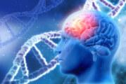 Тест познава паркинсониците с най-голям риск от деменция
