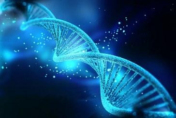 Изкуствени ензими може да са ключа към лечението на Паркинсон
